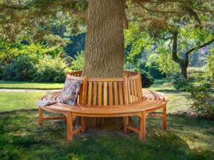Скамейка вокруг дерева...